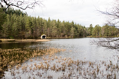 The Boat House (StickyToffeeQueen) Tags: glentanar cairngormsnationalpark lochan