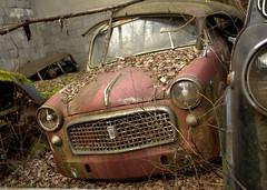 Auto (5) (Bettina.Gerstb.) Tags: scrapyard cars rust motorcycles vintagecars schrottplatz oldtimer rost motorrad autos