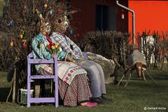 Rabbit Couple (GerWi) Tags: ostern easter chick kücken couple hasen osterhasen schaf
