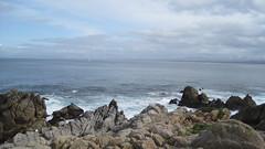 IMG_6132 (cheryl's pix) Tags: california pacificgrove pacificgroveca