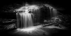 It Falls (edwinemmerick) Tags: waterfall landscape bw blackandwhite nature longexposure bluemountains nsw australia