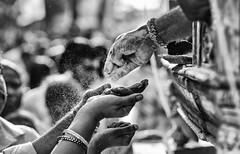 Vibhuti (Padmanabhan Rangarajan) Tags: kapaleeswarantemple 63 arubathimoovar mylapore festival carfestival chariot