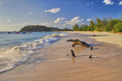 Ffreyes Beach at Sunset (ronmcmanus1) Tags: antigua beach hdr landscape nature outdoors waterwaterfront caribbean jollyharbour stmarysparish antiguabarbuda
