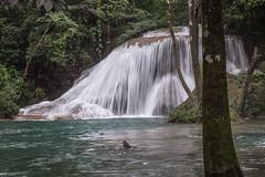 Palenque Roberto Barrio falls cascades