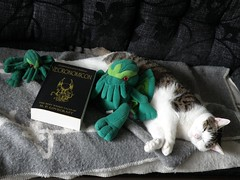 Lovecraftian cat (Mr. Arthur S. Rowan) Tags: cat book plush cthulhu lovecraft horror mythos necronomicon