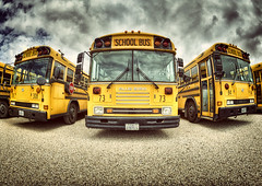 School Force (Allard Schager) Tags: school urban usa buses yellow yard america vintage concrete outdoors daylight utah spring nikon unitedstatesofamerica transport grain icon fisheye transportation april bluebird schoolbus noise frontal amerika stgeorge 16mm lente iconic blunt hdr noisy timeless hangout gettyimages brutal inyourface schoolbuses fullfrontal 2013 5xp d700 nikond700 nikonfx nikkor16mmf28fisheye allardone allard1 allardschagercom schoolforce