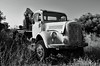 Abandoned ! (Stephen Whittaker) Tags: rot abandoned grass truck mercedes nikon rust desert diesel vehicle abandone d5100 whitto27