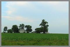 Old House on the Prairie (saguarosally) Tags: blue green rural illinois midwest farm il crops rurallife ruralfarmlife