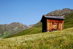 Sommer auf der Alm (bounty390) Tags: grate sommer berge gras grn braun gipfel kappl paznaun