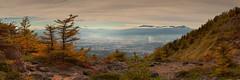H e r B e a t e n W i n g s (AnthonyGinmanPhotography) Tags: panorama colours southernalps mtfuji naganoprefecture novoflex olympuse620 tomishi takaminekogan olympus1454mmf28autumnautumn