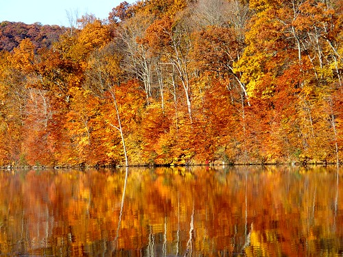 Orange Autumn Reflection