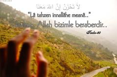 لاَ تَحْزَنْ إِنَّ اللّهَ مَعَنَا (gLySuNfLoWeR) Tags: allah iman kuran ayet islamiyet üzülme latahzen
