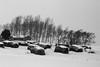 水墨雪原 (zhouyousifang) Tags: winter snow 雪景 东北 northeastchina 2013 路途
