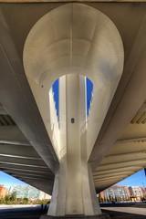 DSC_4032 (Joachim S. Mller) Tags: bridge espaa valencia spain calatrava brcke santiagocalatrava spanien espania ciudaddelasartesydelasciencias ciudaddelasartes stadtderknsteundderwissenschaften stadtderknste pontdelassutdelor puentedelassutdelor assutdelorbridge