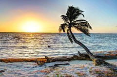 HDR - 442fuse (mastrfshrmn) Tags: ocean sea panorama sun moon beach water colors canon stars island photo sand scenery paradise belize picture palmtrees hut photograph cabana tropical hdr kayaks centralamerica atoll 70d turneffeisland turneffeatoll blackbirdcaye