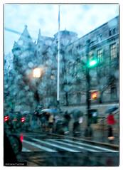 af1312_1235 (Adriana Fchter) Tags: street new york city nyc newyorkcity usa ny newyork building water rain brooklyn night america agua manhattan chuva gotas noturna noite gothamist predios adrianafuchter
