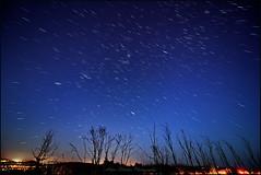 BOUDI TRAILS 1 (GTV6FLETCH) Tags: longexposure canon stars centralcoast sigma1224mm startrails canoneos5dmark2 siggy1224mm