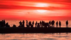 People silhouettes on the jetty (Massimo Buccolieri) Tags: sonnenuntergang sunset trieste coucherdusoleil lapuestadelsol ocean people pôrdosol seascape silhouette solnedgang tramonto
