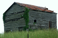 Abandoned Barn (~ Lone Wadi ~) Tags: barn rural farmcountry crittendencounty kentucky decay decaying abandoned abandonment ivy tinroof farm field