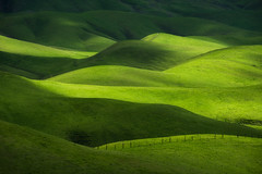 Boundaries (jojo (imagesofdream)) Tags: kerncounty bakersfield california green hills trees
