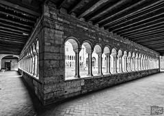 Verona Italia (D. Lorente) Tags: dlorente nikon bw bn buildings claustro architecture arcos verona italia