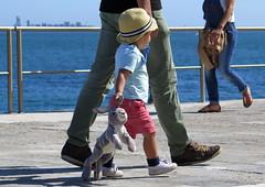 415-June'16 (Silvia Inacio) Tags: cascais portugal rabbit coelho kid hat