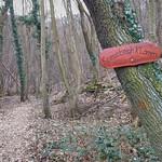Kreuzbachklamm im Binger Stadtwald thumbnail