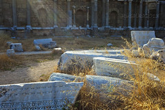 The Agora State, Side (Matilda Diamant) Tags: morning light holiday history museum architecture turkey ancient ruins state roman antique side ruin imperial historical turkish antic agora openair rusalka