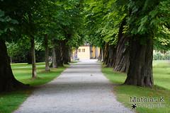 Salzburg Hellbrunn (MathiasK. Fotografie) Tags: park salzburg fotografie sony 75300mm mathias bume baum weg alee kastanie hellbrunn baumstamm karner duundich mathiask wwwmathiaskarnerat wwwduundichphoto