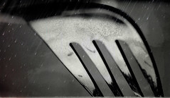 31/100 - Fork in the rain (Jani M) Tags: bw rain fork forkgroup 100possibilities