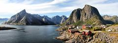 Iles Lofoten 5-Hamnøy (Xtian du Gard) Tags: norvège norway paysage landscape panorama lofoten europe port elitegalleryaoi creativecommons xtiandugard
