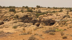SX10-IMG_12546 (old.curmudgeon) Tags: bridge arizona 5050cy canonsx10is