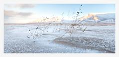 Svalbard (stella-mia) Tags: snow norway svalbard arctic spitsbergen 1635mm nordicwinter arcticclimate canon5dmkii annakrmcke 78northlatitude