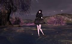 elegant gothic cupcake lolita 1
