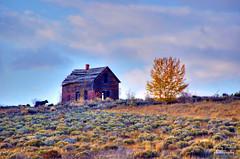 Chesterfield ghost town Idaho (Pattys-photos) Tags: fall cow town cloudy ghost idaho chesterfield