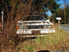 WORN OUT '88 SCIROCCO (richie 59) Tags: auto autumn trees usa ny newyork abandoned overgrown car vw america volkswagen outside us weeds automobile unitedstates antiquecar headlights grill faded vehicle newyorkstate oldcar coupe nys germancar rustycar hatchback wornout nystate rustyoldcar frontend abandonedcar vdub hudsonvalley scirocco 16v whitecar 2door fadedpaint ulstercounty junkcar twodoor motorvehicle europeancar oldvw oldvolkswagen midhudsonvalley 2013 oldrustycar ulstercountyny volkswagenscirocco 2010s oldcoupe 1980scar rustyvolkswagen richie59 volkswagencoupe volkswagenhatchback townofnewpaltzny townofnewpaltz nov2013 nov162013 1988volkswagenscirosso 1988scirocco 1988volkswagen volkswagen16v