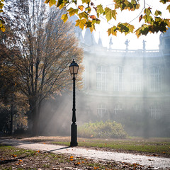 Autumn Backlight (Markus Kolletzky) Tags: autumn backlight hungary nebel laub herbst budapest dust sonne bltter gegenlicht