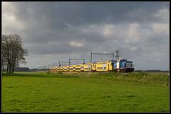08-04-2014, Busch en Dam, VR 203-1 + NSR DDAR + DDZ (Koen langs de baan) Tags: