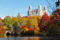 The Beresford in Autumn (SamuelWalters74) Tags: newyorkcity autumn trees newyork unitedstates centralpark manhattan fallcolors places autumnleaves autumncolors fallfoliage theberesford centralparkinautumn