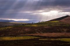 Cumbria (Sandy Sharples) Tags: cumbria lakedistrict valley dales england hills pasture sunrays light beams nature landscape winter february