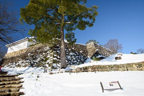 彦根城14・Hikone Castle