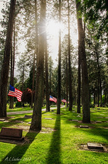 In Between the Trees (SimplyAmy74) Tags: trees cemetery sunshine shadows headstones americanflag flags memory memorialday coeurdalene sunflare memorialdayweekend cemeterywandering