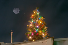 Christmas in Afghanistan (James Brian Clark) Tags: christmas xmas winter light moon holiday afghanistan tree night december military christmastree full fullmoon 2012 warzone bagram