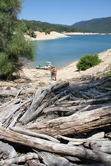 lake_oroville_june13 (25) (KrystianaBrzuza) Tags: wood summer lake beach houseboat driftwood pile shore boating pontoon oroville onthewater lakeoroville driftwoodpile driftwoodgraveyard