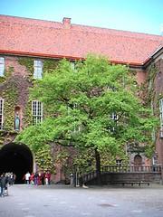 sweden_stockholm_33.jpg