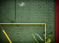 Green  Yellow  Red (GBaker63) Tags: red plant brick green yellow wall pipe wires canonpowershots100