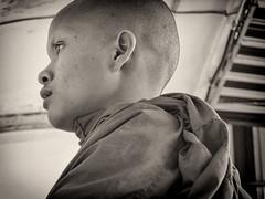 Young Monk_1225 (hkoons) Tags: portrait people man person asia cambodia southeastasia capital religion monk pedestrian sidewalk monks pedestrians phnompenh stroll