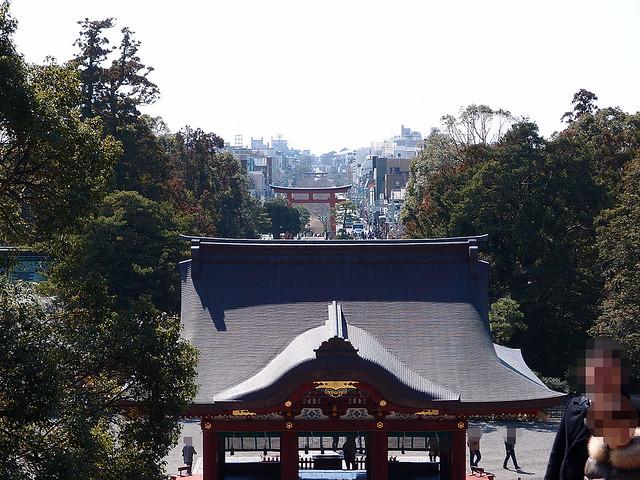 本殿から眺めてみた|鶴岡八幡宮