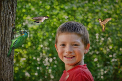 In the Park with Friends (jta1950) Tags: boy people cute texture smile birds kids children person child bokeh adorable littleboy enfant garcon youngboy lenabemanna