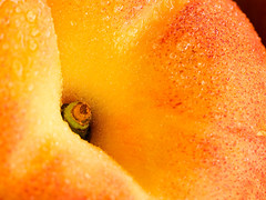 Peach-Fruit-Detail-Wallpaper (vinod_pednekar) Tags: